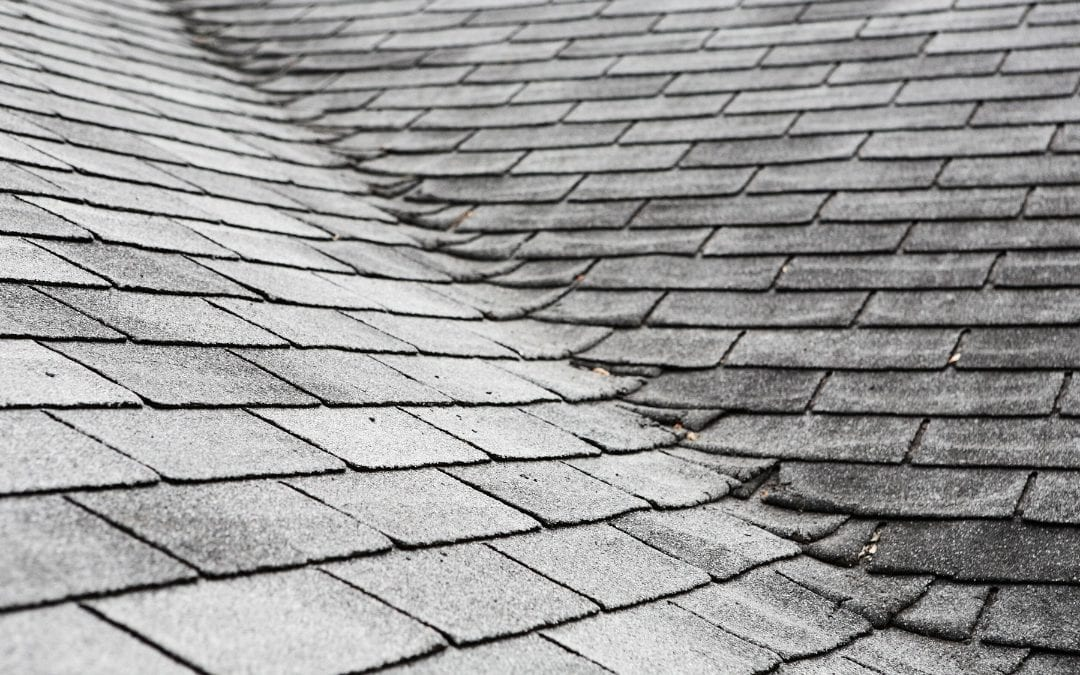 Do You Have a Bad Roof? Here Are Common Signs You Need a Roof Replacement