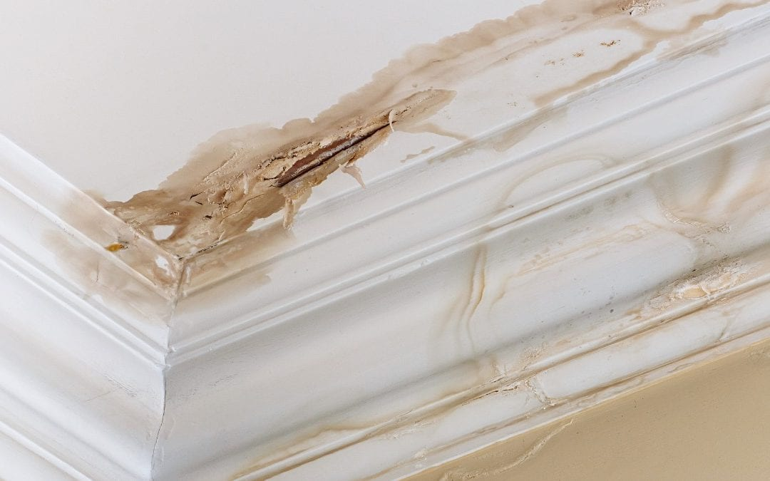 What Causes a Roof Leak? 5 Common Reasons for a Leaky Roof