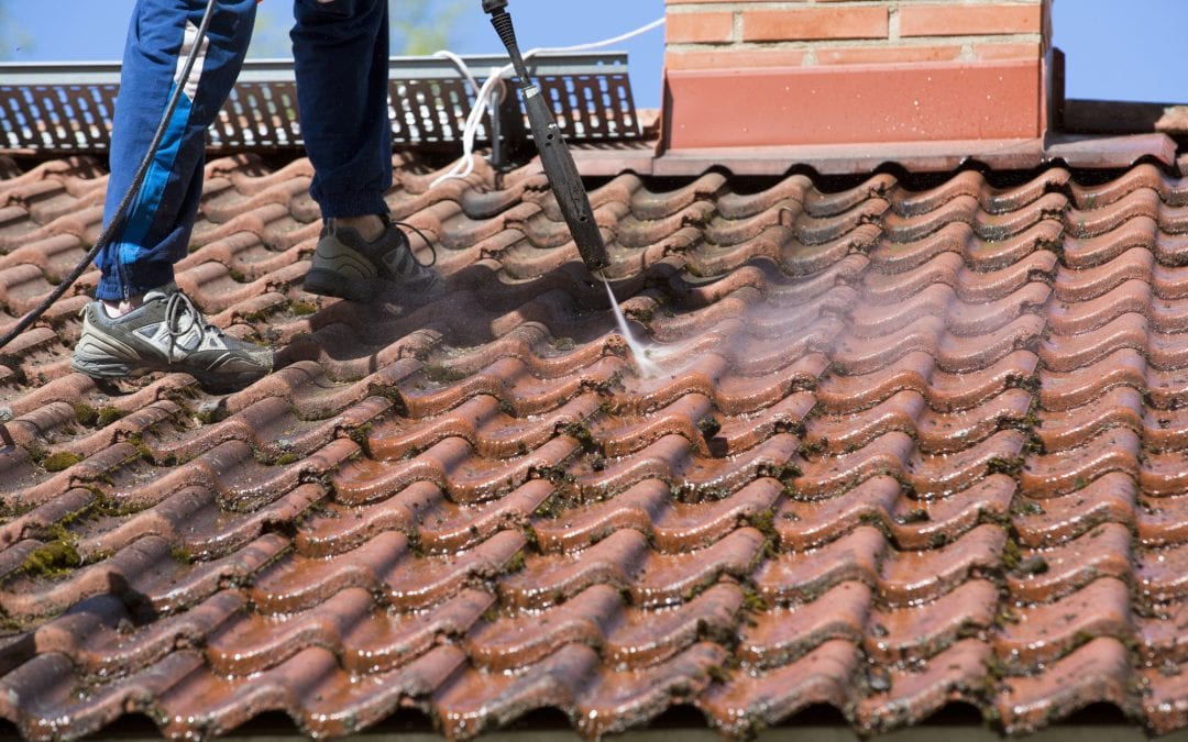 How to Clean Your Roof: An Expert Roof Care Guide