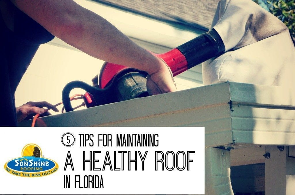 maintaining a healthy roof, roofing contractor, sarasota, fl, florida