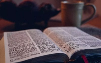 how to read the book of psalms